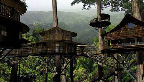 FINCA BELLAVISTA - A Sustainable Rainforest Community
